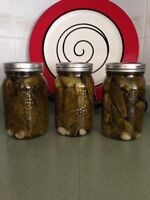 Canned Dill Pickles