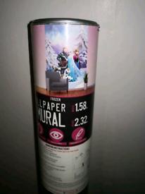 Frozen Wall murial