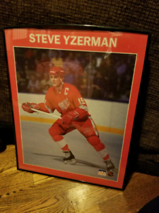 Used vintage Hockey plaques/framed photos