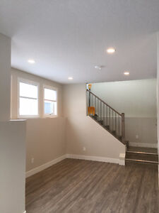 $1150 for Bright and Beautiful 2 Bed Lower Suite