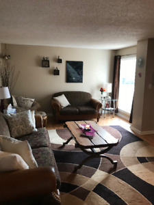 Trades- Basement & Upstairs Room for Rent