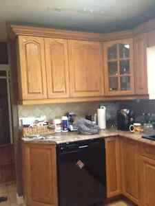 Cabinet Painter Kitchener / Waterloo Kitchener Area image 6