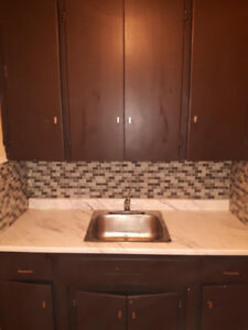 Freshly FULLY Renovated 1 Bed Room Apartment close to downtown