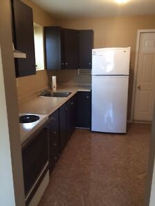 Immaculate 1 Bdrm Above Ground Apartment Mt. Pearl Powers Pond A