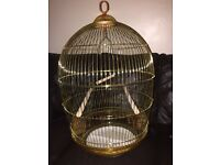 Medium size, easy clean, hang or stand, unused bird cage