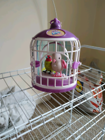 Little live pets 2 birds singing and recording voice