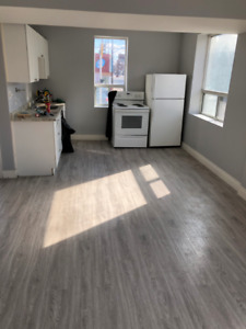 MODERN and BRIGHT 2bed/1bath Apartments for RENT