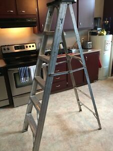 6 foot metal ladder