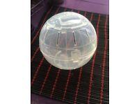 Hamster Ball (£5)