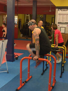 Fitness Classes on Ottawa street Windsor Region Ontario image 3