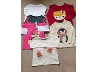 6 Long sleeved tee shirts 12-18 months