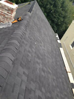 Need a new roof? 10+years experience