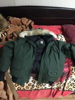 Large Military Green Canada Goose