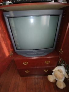 Sony Triniton Flat Screen TV