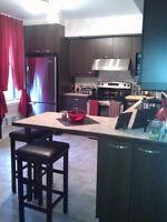 Duplex 2 x 6 1/2 pièces + sous-sol et cours aménagés