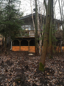 Lake front home or cabin for sale on subdivison at Tobin Lake