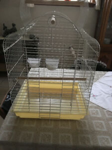 Cockatiel bird cage