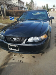 2004 Ford Mustang 40TH anniversary convertible for sale