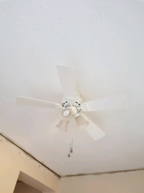 Ceiling fan lam