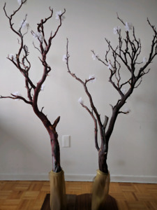 2 manzanita trees for center piece decor