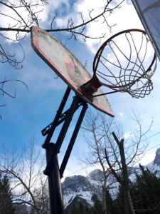 Free basket ball hoop about 9 ft tall