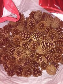 Fir cones for crafters & florist hobbyist approx 124 cones