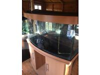 Jewel 260 litre tank
