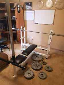 Bench Press with Pulldown, Squat and Dip attachments Edmonton Edmonton Area image 1