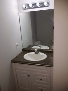 Basement for Rent in Kitchener