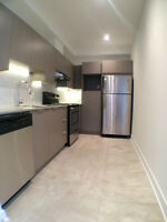 NEW MODERN 2 BEDROOM CONDO HIGH-END SS APPLIANCES, A/C, QUARTZ