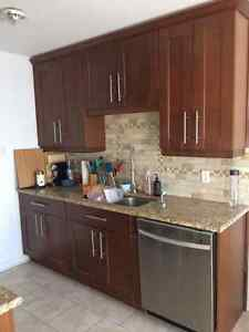 Kitchen cabinets + granite countertop + sink!!!