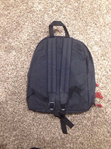 Convers backpack Regina Regina Area image 2