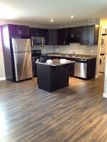 NEW - Beautiful 2 Bedroom Basement Suite Available for Rent