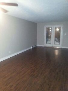 GREAT CONDO STYLE PRIVATE ENTRANCE DOGS UNDER 25 LBS ALLOWED