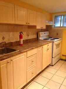 PRISTINE BASEMENT BACHELOR IN LITTLE ITALY- SINGLE TENANT ONLY