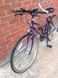 Girls Raleigh Enigma Bike