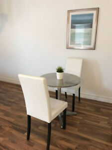 1 Bedroom Modern Furnished Downtown Rental