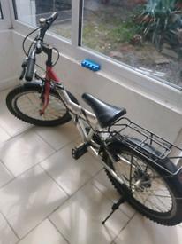 Kids bike RAYON (STELLA)