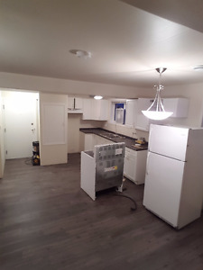 COMPLETELY RENOVATED 2 BEDROOM APARTMENT FOR RENT YORKTON, SK