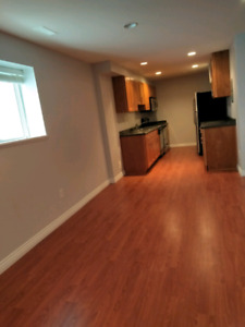 1 bedroom basement suite in Langley for rent