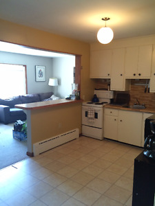 Large 1 Bedroom Downtown Available July 1st.