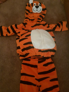 Halloween costume for baby. Tiger