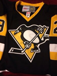 Fleury Pittsburgh Penguins Jersey $100