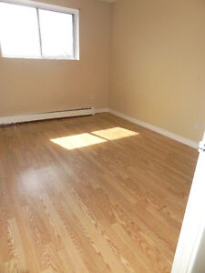 14 LEACREST COURT KITCHENER TWO BEDROOM FOR JAN/1 Kitchener / Waterloo Kitchener Area image 6
