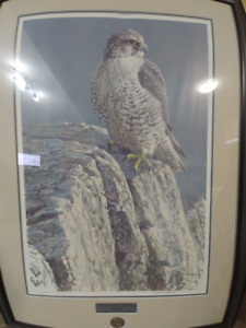 Mountain Monarch Gyrfalcon by Robert Bateman Limited Edition