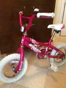 Little Girls Raleigh Pixie Bike