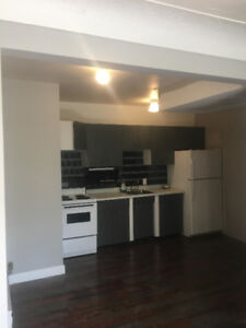 Newly renovated Large 1 BR APT, Rosedale Area