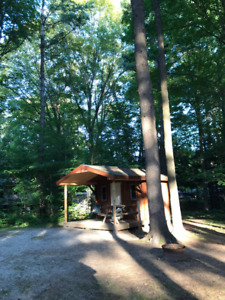 Cabin in Muskoka +Mature Forest +Pool +Park +Kahshe River