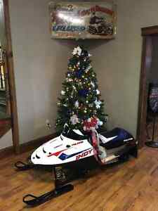 2017 Polaris Indy 120 Youth Snowmobile