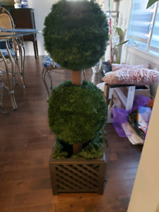 TOPIARY TREE --3 FOOT